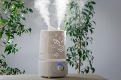 péče o pleť v zimě - vyplatí se investovat do zvlčovače vzduchu